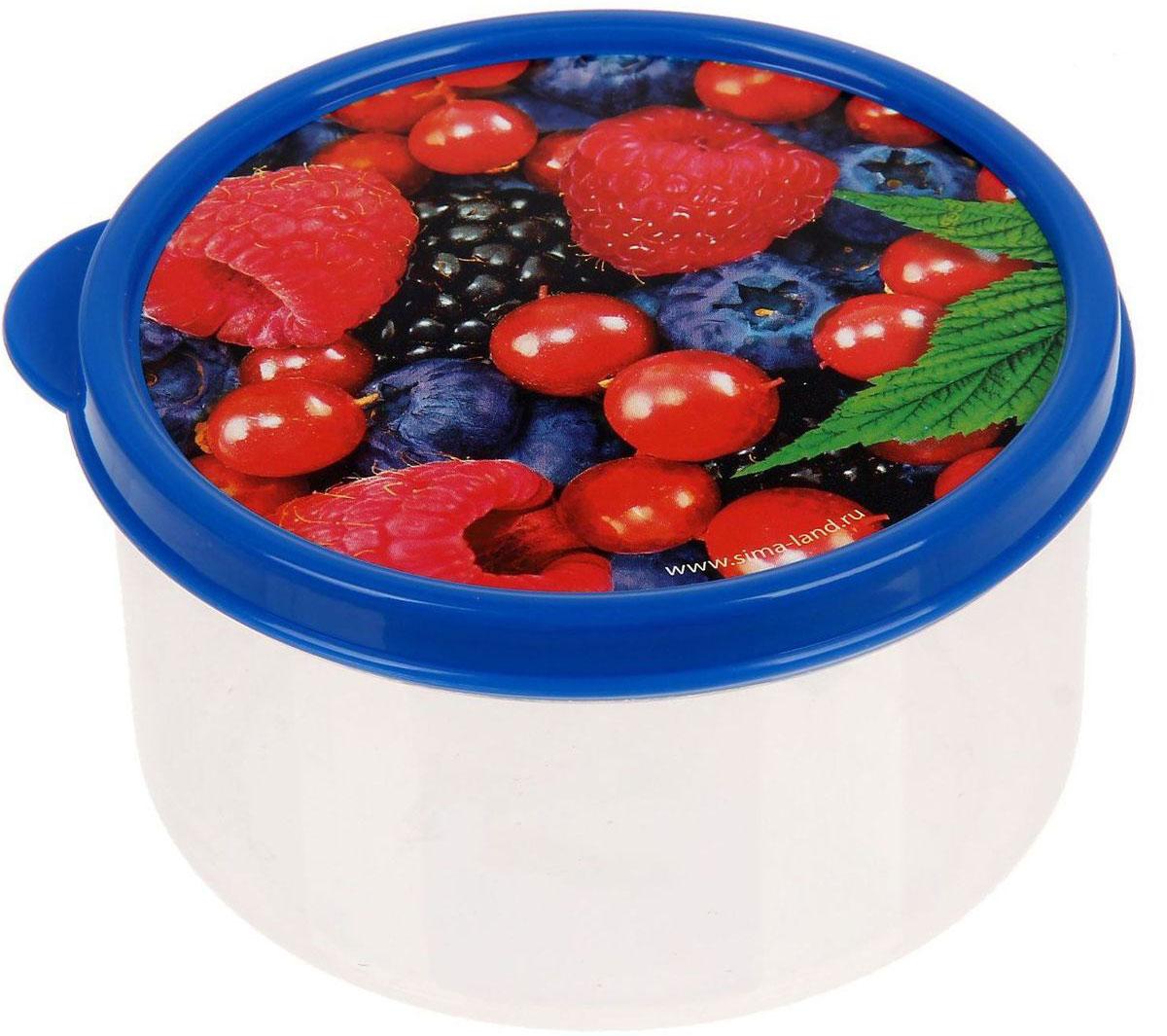 Ланч-бокс Доляна №1, круглый, 300 млVT-1520(SR)Если после вкусного обеда осталась еда, а насладиться трапезой хочется и на следующий день, ланч-бокс станет отличным решением данной проблемы!Такой контейнер является незаменимым предметом кухонной утвари, ведь у него много преимуществ:Простота ухода. Ланч-бокс достаточно промыть тёплой водой с небольшим количеством чистящего средства, и он снова готов к использованию.Вместительность. Большой выбор форм и объёма поможет разместить разнообразные продукты от сахара до супов.Эргономичность. Ланч-боксы очень легко хранить даже в самой маленькой кухне, так как их можно поставить один в другой по принципу матрёшки.Многофункциональность. Разнообразие цветов и форм делает возможным использование контейнеров не только на кухне, но и в других областях домашнего быта.Любители приготовления обеда на всю семью в большинстве случаев приобретают ланч-боксы наборами, так как это позволяет рассортировать продукты по всевозможным признакам. К тому же контейнеры среднего размера станут незаменимыми помощниками на работе: ведь что может быть приятнее, чем порадовать себя во время обеда прекрасной едой, заботливо сохранённой в контейнере?В качестве материала для изготовления используется пластик, что делает процесс ухода за контейнером ещё более эффективным. К каждому ланч-боксу в комплекте также прилагается крышка подходящего размера, это позволяет плотно и надёжно удерживать запах еды и упрощает процесс транспортировки.Однако рекомендуется соблюдать и меры предосторожности: не использовать пластиковые контейнеры в духовых шкафах и на открытом огне, а также не разогревать в микроволновых печах при закрытой крышке ланч-бокса. Соблюдение мер безопасности позволит продлить срок эксплуатации и сохранить отличный внешний вид изделия.Эргономичный дизайн и многофункциональность таких контейнеров — вот, что является причиной большой популярности данного предмета у каждой хозяйки. А в преддверии лета и дачного сезона такое приобретение позволит по