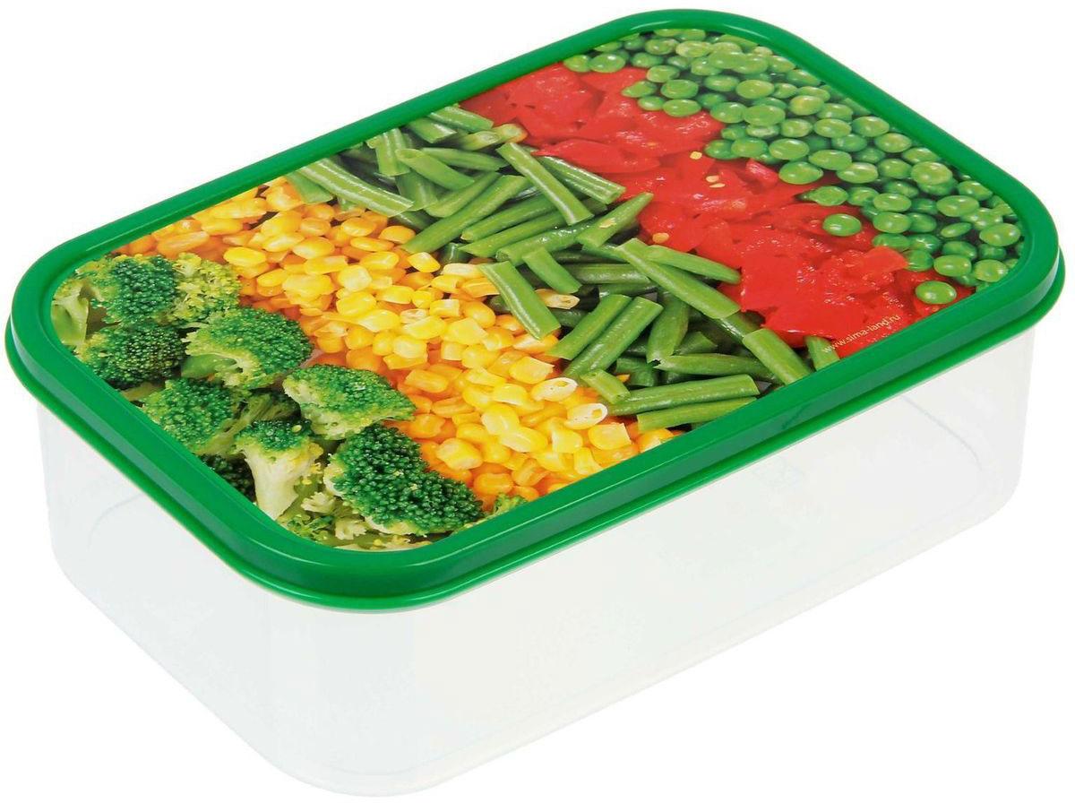 Ланч-бокс Доляна №8, прямоугольный, 1,2 лVT-1520(SR)Если после вкусного обеда осталась еда, а насладиться трапезой хочется и на следующий день, ланч-бокс станет отличным решением данной проблемы!Такой контейнер является незаменимым предметом кухонной утвари, ведь у него много преимуществ:Простота ухода. Ланч-бокс достаточно промыть тёплой водой с небольшим количеством чистящего средства, и он снова готов к использованию.Вместительность. Большой выбор форм и объёма поможет разместить разнообразные продукты от сахара до супов.Эргономичность. Ланч-боксы очень легко хранить даже в самой маленькой кухне, так как их можно поставить один в другой по принципу матрёшки.Многофункциональность. Разнообразие цветов и форм делает возможным использование контейнеров не только на кухне, но и в других областях домашнего быта.Любители приготовления обеда на всю семью в большинстве случаев приобретают ланч-боксы наборами, так как это позволяет рассортировать продукты по всевозможным признакам. К тому же контейнеры среднего размера станут незаменимыми помощниками на работе: ведь что может быть приятнее, чем порадовать себя во время обеда прекрасной едой, заботливо сохранённой в контейнере?В качестве материала для изготовления используется пластик, что делает процесс ухода за контейнером ещё более эффективным. К каждому ланч-боксу в комплекте также прилагается крышка подходящего размера, это позволяет плотно и надёжно удерживать запах еды и упрощает процесс транспортировки.Однако рекомендуется соблюдать и меры предосторожности: не использовать пластиковые контейнеры в духовых шкафах и на открытом огне, а также не разогревать в микроволновых печах при закрытой крышке ланч-бокса. Соблюдение мер безопасности позволит продлить срок эксплуатации и сохранить отличный внешний вид изделия.Эргономичный дизайн и многофункциональность таких контейнеров — вот, что является причиной большой популярности данного предмета у каждой хозяйки. А в преддверии лета и дачного сезона такое приобретение позвол