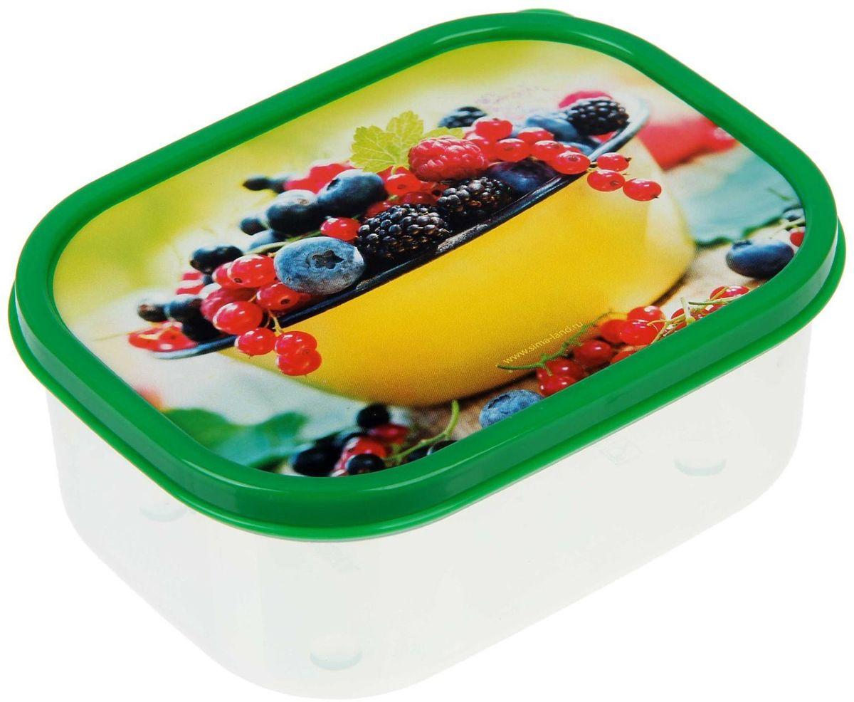 Ланч-бокс Доляна №12, прямоугольный, 500 млVT-1520(SR)Если после вкусного обеда осталась еда, а насладиться трапезой хочется и на следующий день, ланч-бокс станет отличным решением данной проблемы!Такой контейнер является незаменимым предметом кухонной утвари, ведь у него много преимуществ:Простота ухода. Ланч-бокс достаточно промыть тёплой водой с небольшим количеством чистящего средства, и он снова готов к использованию.Вместительность. Большой выбор форм и объёма поможет разместить разнообразные продукты от сахара до супов.Эргономичность. Ланч-боксы очень легко хранить даже в самой маленькой кухне, так как их можно поставить один в другой по принципу матрёшки.Многофункциональность. Разнообразие цветов и форм делает возможным использование контейнеров не только на кухне, но и в других областях домашнего быта.Любители приготовления обеда на всю семью в большинстве случаев приобретают ланч-боксы наборами, так как это позволяет рассортировать продукты по всевозможным признакам. К тому же контейнеры среднего размера станут незаменимыми помощниками на работе: ведь что может быть приятнее, чем порадовать себя во время обеда прекрасной едой, заботливо сохранённой в контейнере?В качестве материала для изготовления используется пластик, что делает процесс ухода за контейнером ещё более эффективным. К каждому ланч-боксу в комплекте также прилагается крышка подходящего размера, это позволяет плотно и надёжно удерживать запах еды и упрощает процесс транспортировки.Однако рекомендуется соблюдать и меры предосторожности: не использовать пластиковые контейнеры в духовых шкафах и на открытом огне, а также не разогревать в микроволновых печах при закрытой крышке ланч-бокса. Соблюдение мер безопасности позволит продлить срок эксплуатации и сохранить отличный внешний вид изделия.Эргономичный дизайн и многофункциональность таких контейнеров — вот, что является причиной большой популярности данного предмета у каждой хозяйки. А в преддверии лета и дачного сезона такое приобретение позв