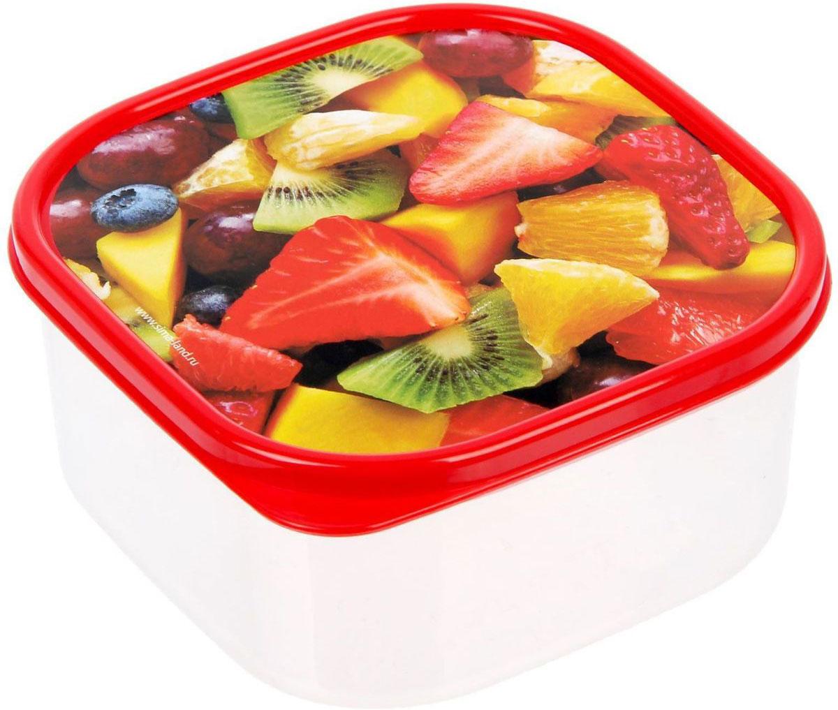 Ланч-бокс Доляна №4, квадратный, 700 млVT-1520(SR)Если после вкусного обеда осталась еда, а насладиться трапезой хочется и на следующий день, ланч-бокс станет отличным решением данной проблемы!Такой контейнер является незаменимым предметом кухонной утвари, ведь у него много преимуществ:Простота ухода. Ланч-бокс достаточно промыть тёплой водой с небольшим количеством чистящего средства, и он снова готов к использованию.Вместительность. Большой выбор форм и объёма поможет разместить разнообразные продукты от сахара до супов.Эргономичность. Ланч-боксы очень легко хранить даже в самой маленькой кухне, так как их можно поставить один в другой по принципу матрёшки.Многофункциональность. Разнообразие цветов и форм делает возможным использование контейнеров не только на кухне, но и в других областях домашнего быта.Любители приготовления обеда на всю семью в большинстве случаев приобретают ланч-боксы наборами, так как это позволяет рассортировать продукты по всевозможным признакам. К тому же контейнеры среднего размера станут незаменимыми помощниками на работе: ведь что может быть приятнее, чем порадовать себя во время обеда прекрасной едой, заботливо сохранённой в контейнере?В качестве материала для изготовления используется пластик, что делает процесс ухода за контейнером ещё более эффективным. К каждому ланч-боксу в комплекте также прилагается крышка подходящего размера, это позволяет плотно и надёжно удерживать запах еды и упрощает процесс транспортировки.Однако рекомендуется соблюдать и меры предосторожности: не использовать пластиковые контейнеры в духовых шкафах и на открытом огне, а также не разогревать в микроволновых печах при закрытой крышке ланч-бокса. Соблюдение мер безопасности позволит продлить срок эксплуатации и сохранить отличный внешний вид изделия.Эргономичный дизайн и многофункциональность таких контейнеров — вот, что является причиной большой популярности данного предмета у каждой хозяйки. А в преддверии лета и дачного сезона такое приобретение позволит