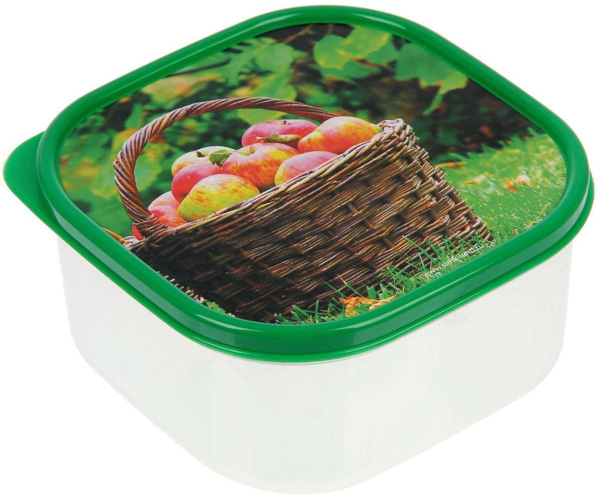 Ланч-бокс Доляна №10, квадратный, 700 млVT-1520(SR)Если после вкусного обеда осталась еда, а насладиться трапезой хочется и на следующий день, ланч-бокс станет отличным решением данной проблемы!Такой контейнер является незаменимым предметом кухонной утвари, ведь у него много преимуществ:Простота ухода. Ланч-бокс достаточно промыть тёплой водой с небольшим количеством чистящего средства, и он снова готов к использованию.Вместительность. Большой выбор форм и объёма поможет разместить разнообразные продукты от сахара до супов.Эргономичность. Ланч-боксы очень легко хранить даже в самой маленькой кухне, так как их можно поставить один в другой по принципу матрёшки.Многофункциональность. Разнообразие цветов и форм делает возможным использование контейнеров не только на кухне, но и в других областях домашнего быта.Любители приготовления обеда на всю семью в большинстве случаев приобретают ланч-боксы наборами, так как это позволяет рассортировать продукты по всевозможным признакам. К тому же контейнеры среднего размера станут незаменимыми помощниками на работе: ведь что может быть приятнее, чем порадовать себя во время обеда прекрасной едой, заботливо сохранённой в контейнере?В качестве материала для изготовления используется пластик, что делает процесс ухода за контейнером ещё более эффективным. К каждому ланч-боксу в комплекте также прилагается крышка подходящего размера, это позволяет плотно и надёжно удерживать запах еды и упрощает процесс транспортировки.Однако рекомендуется соблюдать и меры предосторожности: не использовать пластиковые контейнеры в духовых шкафах и на открытом огне, а также не разогревать в микроволновых печах при закрытой крышке ланч-бокса. Соблюдение мер безопасности позволит продлить срок эксплуатации и сохранить отличный внешний вид изделия.Эргономичный дизайн и многофункциональность таких контейнеров — вот, что является причиной большой популярности данного предмета у каждой хозяйки. А в преддверии лета и дачного сезона такое приобретение позволи