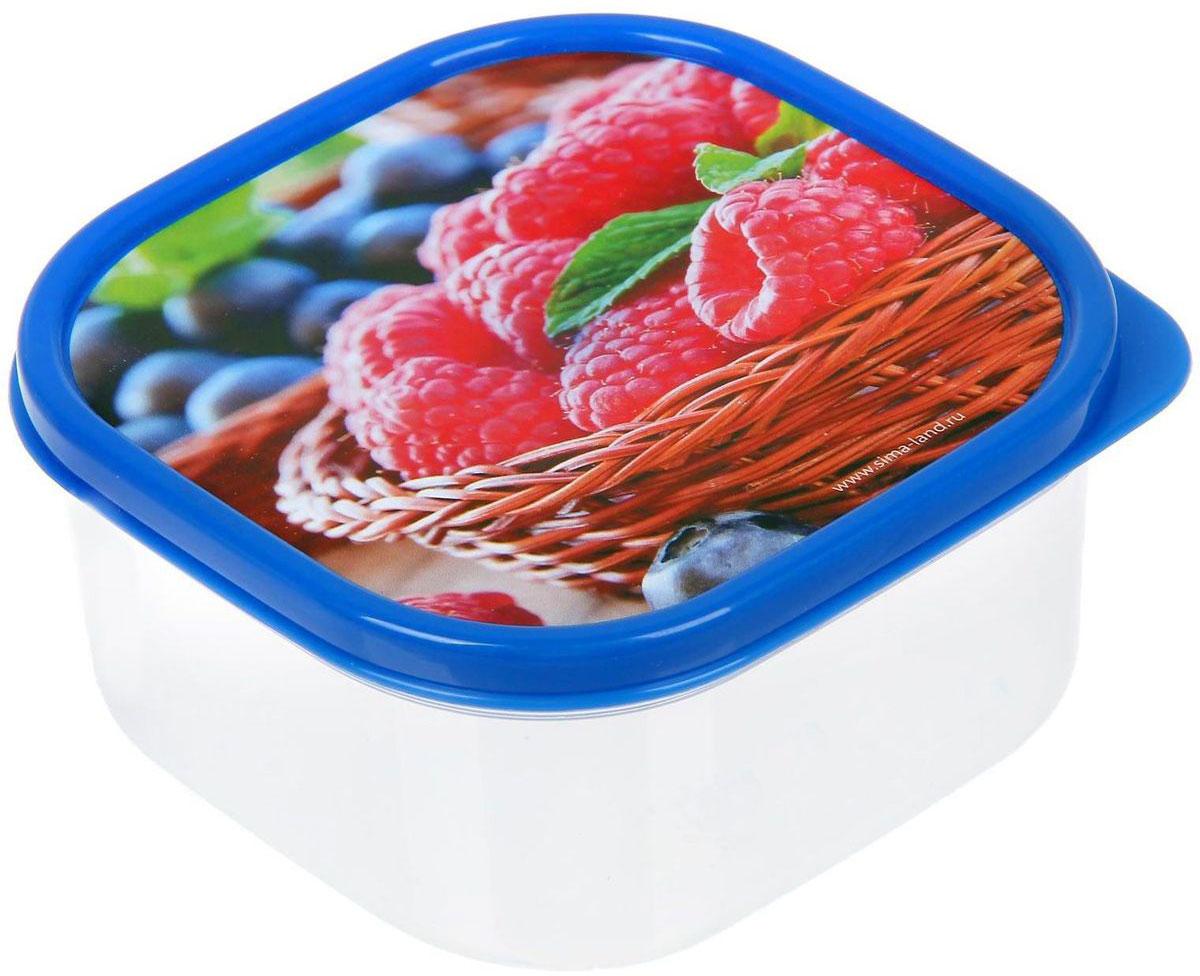 Ланч-бокс Доляна №1, квадратный, 450 млVT-1520(SR)Если после вкусного обеда осталась еда, а насладиться трапезой хочется и на следующий день, ланч-бокс станет отличным решением данной проблемы!Такой контейнер является незаменимым предметом кухонной утвари, ведь у него много преимуществ:Простота ухода. Ланч-бокс достаточно промыть тёплой водой с небольшим количеством чистящего средства, и он снова готов к использованию.Вместительность. Большой выбор форм и объёма поможет разместить разнообразные продукты от сахара до супов.Эргономичность. Ланч-боксы очень легко хранить даже в самой маленькой кухне, так как их можно поставить один в другой по принципу матрёшки.Многофункциональность. Разнообразие цветов и форм делает возможным использование контейнеров не только на кухне, но и в других областях домашнего быта.Любители приготовления обеда на всю семью в большинстве случаев приобретают ланч-боксы наборами, так как это позволяет рассортировать продукты по всевозможным признакам. К тому же контейнеры среднего размера станут незаменимыми помощниками на работе: ведь что может быть приятнее, чем порадовать себя во время обеда прекрасной едой, заботливо сохранённой в контейнере?В качестве материала для изготовления используется пластик, что делает процесс ухода за контейнером ещё более эффективным. К каждому ланч-боксу в комплекте также прилагается крышка подходящего размера, это позволяет плотно и надёжно удерживать запах еды и упрощает процесс транспортировки.Однако рекомендуется соблюдать и меры предосторожности: не использовать пластиковые контейнеры в духовых шкафах и на открытом огне, а также не разогревать в микроволновых печах при закрытой крышке ланч-бокса. Соблюдение мер безопасности позволит продлить срок эксплуатации и сохранить отличный внешний вид изделия.Эргономичный дизайн и многофункциональность таких контейнеров — вот, что является причиной большой популярности данного предмета у каждой хозяйки. А в преддверии лета и дачного сезона такое приобретение позволит