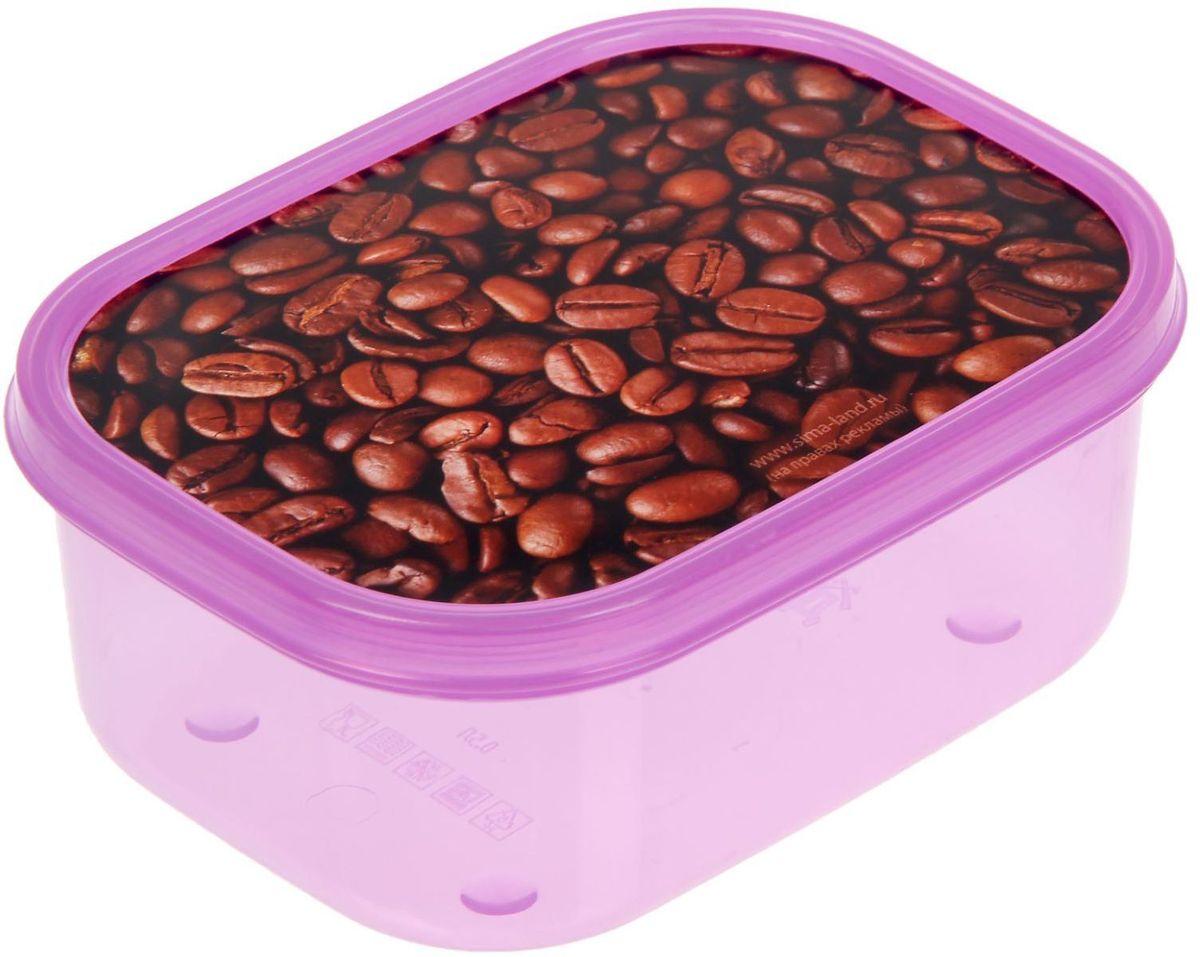 Ланч-бокс Доляна №25, прямоугольный, 500 млVT-1520(SR)Если после вкусного обеда осталась еда, а насладиться трапезой хочется и на следующий день, ланч-бокс станет отличным решением данной проблемы!Такой контейнер является незаменимым предметом кухонной утвари, ведь у него много преимуществ:Простота ухода. Ланч-бокс достаточно промыть тёплой водой с небольшим количеством чистящего средства, и он снова готов к использованию.Вместительность. Большой выбор форм и объёма поможет разместить разнообразные продукты от сахара до супов.Эргономичность. Ланч-боксы очень легко хранить даже в самой маленькой кухне, так как их можно поставить один в другой по принципу матрёшки.Многофункциональность. Разнообразие цветов и форм делает возможным использование контейнеров не только на кухне, но и в других областях домашнего быта.Любители приготовления обеда на всю семью в большинстве случаев приобретают ланч-боксы наборами, так как это позволяет рассортировать продукты по всевозможным признакам. К тому же контейнеры среднего размера станут незаменимыми помощниками на работе: ведь что может быть приятнее, чем порадовать себя во время обеда прекрасной едой, заботливо сохранённой в контейнере?В качестве материала для изготовления используется пластик, что делает процесс ухода за контейнером ещё более эффективным. К каждому ланч-боксу в комплекте также прилагается крышка подходящего размера, это позволяет плотно и надёжно удерживать запах еды и упрощает процесс транспортировки.Однако рекомендуется соблюдать и меры предосторожности: не использовать пластиковые контейнеры в духовых шкафах и на открытом огне, а также не разогревать в микроволновых печах при закрытой крышке ланч-бокса. Соблюдение мер безопасности позволит продлить срок эксплуатации и сохранить отличный внешний вид изделия.Эргономичный дизайн и многофункциональность таких контейнеров — вот, что является причиной большой популярности данного предмета у каждой хозяйки. А в преддверии лета и дачного сезона такое приобретение позв