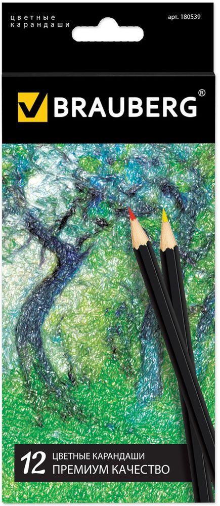Brauberg Набор цветных карандашей Artist Line 12 цветов610842В набор входят 12 карандашей высокого качества. Специальная рецептура грифеля позволяет карандашам мягко скользить по бумаге, оставляя насыщенную цветовую линию. Используемая при производстве высокосортная древесина бережет грифель от поломки.12 цветов. Диаметр грифеля - 3 мм. Высокосортная древесина. Шестигранный корпус. Легко затачиваются. Картонная упаковка с европодвесом.