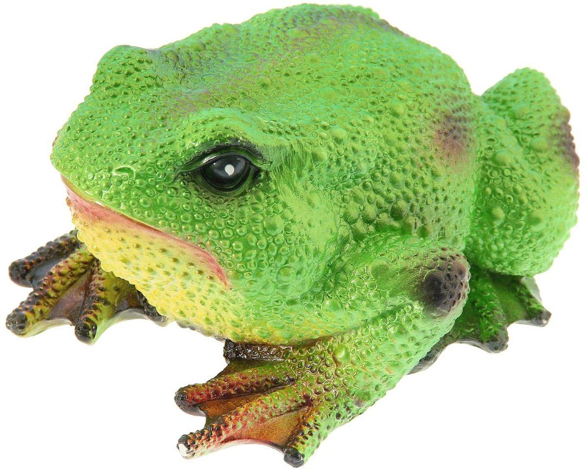 Фигура садовая Premium Gips Салатовая жаба, 30 х 24 х 16 см19201Забавные лягушата добавят новые краски в ландшафт сада. Красочная? Садовая фигура расставит нужные акценты: приманит взор к водоёму или привлечёт внимание к цветочной клумбе. Гармоничнее всего лягушки сморятся в местах своего природного обитания: располагайте их рядом с водой или в траве. Фигура из гипса экологичная, лёгкая и долговечная. Она сделает любимый сад неповторимым.