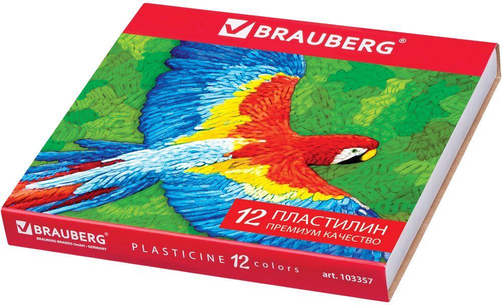 Brauberg Пластилин 12 цветов 240 г 10335772523WDПредназначен для лепки и моделирования. Способствует развитию мелкой моторики у ребенка, творческих способностей, получению положительных эмоций. Высшее качество обеспечивает прекрасные пластичные свойства, мягкость, яркие насыщенные цвета.