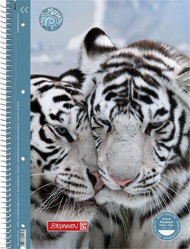 Stewo Тетрадь Fans of Earth - Tiger в линейку 80 листов72523WDТетрадь Колледж на спирали Brunnen 80 листов. Формат А4, линейка. Плотность блока тетради 90 г/м, микроперфорация и 4 отверстия для более легкого отделения листов. Обложка тетради выполнена из плотного картона и украшена ярким принтом с белым тигром. Fans of Earth - Tiger