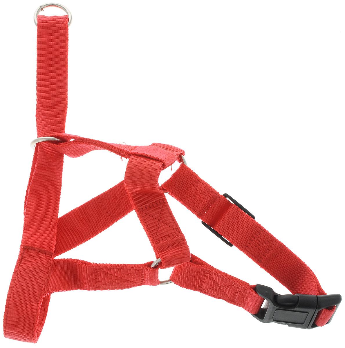 Недоуздок для собак Yami-Yami, ширина 2,5 см, обхват шеи 46-55 см0120710Недоуздок Yami-Yami - отличный и безопасный способ коррекции поведения вашей собаки. Надежно закрепляясь на морде, недоуздок фиксирует пасть, не давая собаки возможности кусаться. Использование недоуздка не позволит животному травмировать шею или гортань. Недоуздок хорошо подойдет для непослушных собак и щенков, при помощи недоуздка их смогут выгуливать и дети, и пожилые люди. Применение недоуздка не причиняет собаке дискомфорта, напротив, в нем у нее больше возможности для игр. Также, если недоуздок не затягивать туго, собака сможет в нем даже поесть и попить. Изготовлен из капрона шириной 25 мм, металлические кольца сварены встык, пряжки пластиковые. Предназначен для ежедневного выгула животного. Обхват шеи: 46-55 см.Обхват носа: 21-58 см.Длина нащечного ремня: 10 см.Длина подбородного ремня: 6 см.