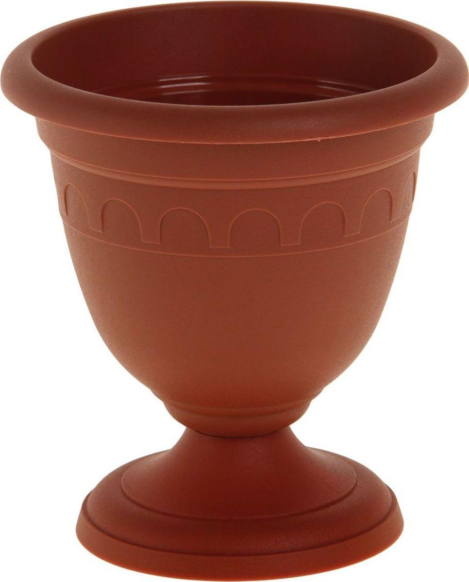 Вазон Martika Колывань, цвет: терракотовый, 0,8 л141-442Любой, даже самый современный и продуманный интерьер будет не завершённым без растений. Они не только очищают воздух и насыщают его кислородом, но и заметно украшают окружающее пространство. Такому полезному члену семьи просто необходимо красивое и функциональное кашпо, оригинальный горшок или необычная ваза! Мы предлагаем - Вазон высокий Колывань 0,8 л d=14 см, цвет терракотовый! Оптимальный выбор материала пластмасса! Почему мы так считаем? Малый вес. С лёгкостью переносите горшки и кашпо с места на место, ставьте их на столики или полки, подвешивайте под потолок, не беспокоясь о нагрузке. Простота ухода. Пластиковые изделия не нуждаются в специальных условиях хранения. Их легко чистить достаточно просто сполоснуть тёплой водой. Никаких царапин. Пластиковые кашпо не царапают и не загрязняют поверхности, на которых стоят. Пластик дольше хранит влагу, а значит растение реже нуждается в поливе. Пластмасса не пропускает воздух корневой системе растения не грозят резкие перепады температур. Огромный выбор форм, декора и расцветок вы без труда подберёте что-то, что идеально впишется в уже существующий интерьер. Соблюдая нехитрые правила ухода, вы можете заметно продлить срок службы горшков, вазонов и кашпо из пластика: всегда учитывайте размер кроны и корневой системы растения (при разрастании большое растение способно повредить маленький горшок)берегите изделие от воздействия прямых солнечных лучей, чтобы кашпо и горшки не выцветалидержите кашпо и горшки из пластика подальше от нагревающихся поверхностей. Создавайте прекрасные цветочные композиции, выращивайте рассаду или необычные растения, а низкие цены позволят вам не ограничивать себя в выборе.
