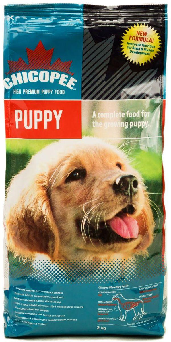 Корм сухой Chicopee Puppy Dog Food для щенков, с птицей, 2 кг0120710Основой питания собаки на протяжении первого года жизни должен быть комплекс питательных веществ, обеспечивающих нормальное функционирование растущего организма. Учитывая эту особенность, компания Chicopee разработала корм, предназначенный для щенков всех пород, независимо от их размера и уровня активности.Поскольку белок — это главный строительный элемент для организма собаки, развития ее костей, сильной мускулатуры, а также роста шерсти и когтей, то главной особенностью данного корма является именно высокое содержание белка в составе муки из мяса домашней птицы, рыбной муки и белкового гидролизата.Особенности состава Chicopee для щенков всех пород:Витамины группы В, жирные кислоты Омега-3 и Омега-6 способствуют развитию здоровой нервной системы, которая впоследствии отвечает за адекватное поведение собаки, ее способность к обучению и запоминанию, отсутствие агрессии и стремление к коммуникации с сородичами и людьми;Значительное содержание углеводов в составе злаков обеспечивают молодое животное достаточной энергией на протяжении всего дня;Рыбий жир способствует формированию кожного и шерстного покрова животного, делая каждый его волос сильным, крепким и блестящим;Кальций, калий и фосфор обеспечивают формирование костей, суставов, хрящей, а также рост зубов и когтей.Ингредиенты:мука из мяса домашней птицы, кукуруза, жир домашней птицы, pыбная мука, свекловичный жом, pис, пшеничная мука, дробленая пшеница, гидролизат белка, яичный порошок, cемя льна, сухие дрожжи, pыбий жир, xлористый калий, поваренная соль, корень цикория (инулин 0.10%), дрожжевой экстракт (МОS 0.10%).Добавки на 1 кг:Витамин A 18,000 ME, Витамин D3 1,450 ME, Витамин E 180 мг, Медь (сульфат меди, пентагидрат) 11 мг, Цинк (оксид цинка) 110 мг, Цинк (хелат цинка из гидрата аминокислот) 55 мг, Йод (йодат кальция обезвоженный) 3.5 мг, Селен (селенид натрия) 0.2 мг.