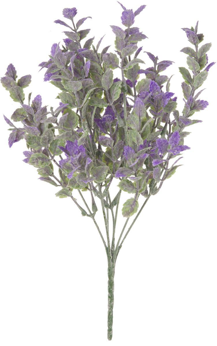 Цветы искусственные Engard Мелкоцвет, цвет: фиолетовый, 30 см19201Искусственные цветы Engard - это популярное дизайнерское решение для создания природного колорита и индивидуальности в интерьере. Декоративный мелкоцвет фиолетового цвета выполнен из высококачественного материала передающего неповторимую естественность и ничем не уступает живым цветам. Необычные размеры и броские формы соцветий отлично подходят для создания эксклюзивных композиций.Не требует постоянного ухода. Размер: 30 см.