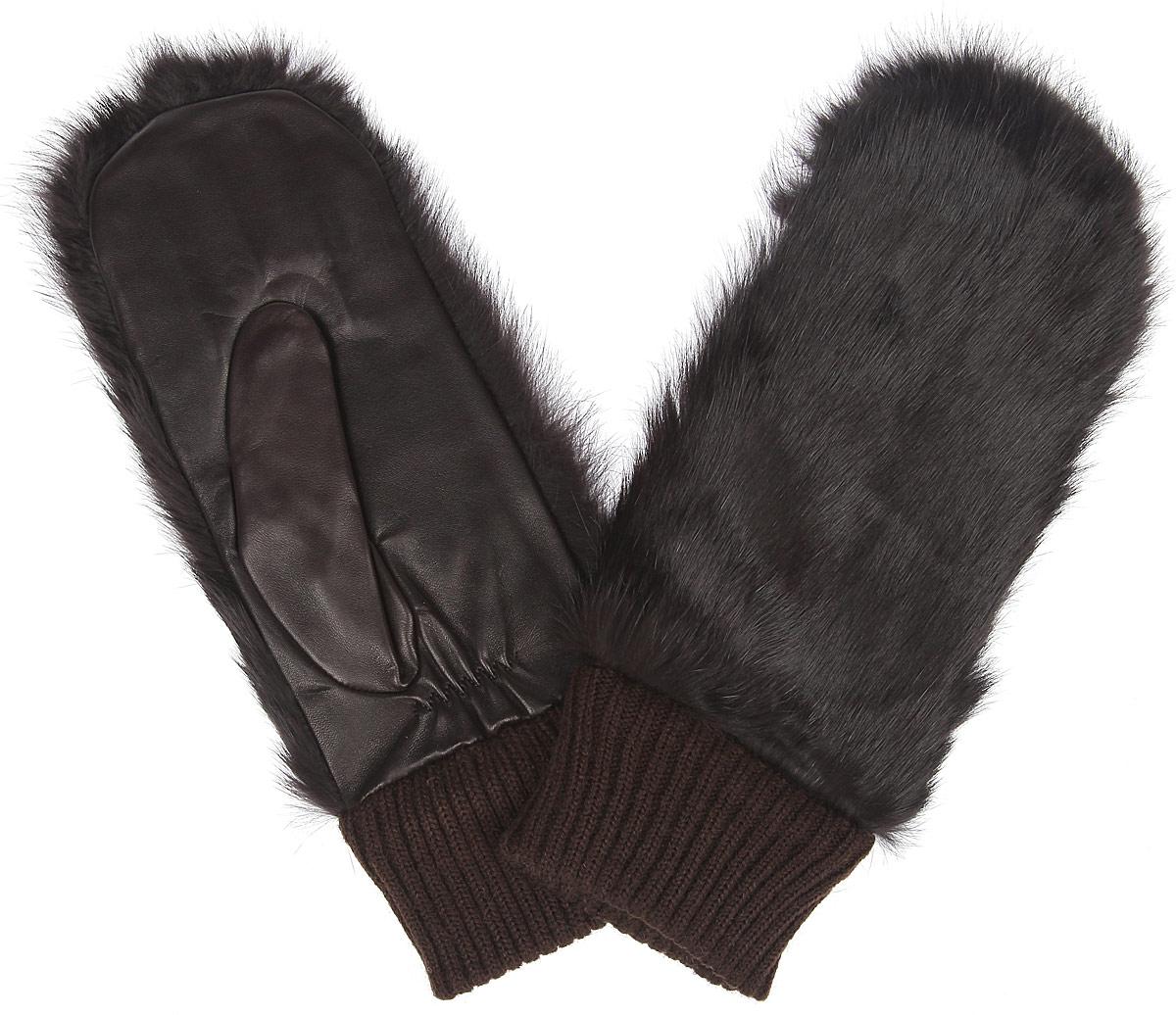 Варежки женские Eleganzza, цвет: коричневый. IS995. Размер 6,5IS995Стильные женские варежки Eleganzza не только защитят ваши руки от холода, но и станут великолепным украшением. Ладонная часть модели выполнена из натуральной кожи с гладкой поверхностью, тыльная сторона - из натурального меха кролика. Подкладка в форме перчатки выполнена из натуральной шерсти. Широкая резинка на запястье препятствует проникновению холодного воздуха. Вместе с этим аксессуаром вы обретаете женственность и элегантность. Варежки Eleganzza станут завершающим и подчеркивающим элементом вашего стиля и неповторимости.
