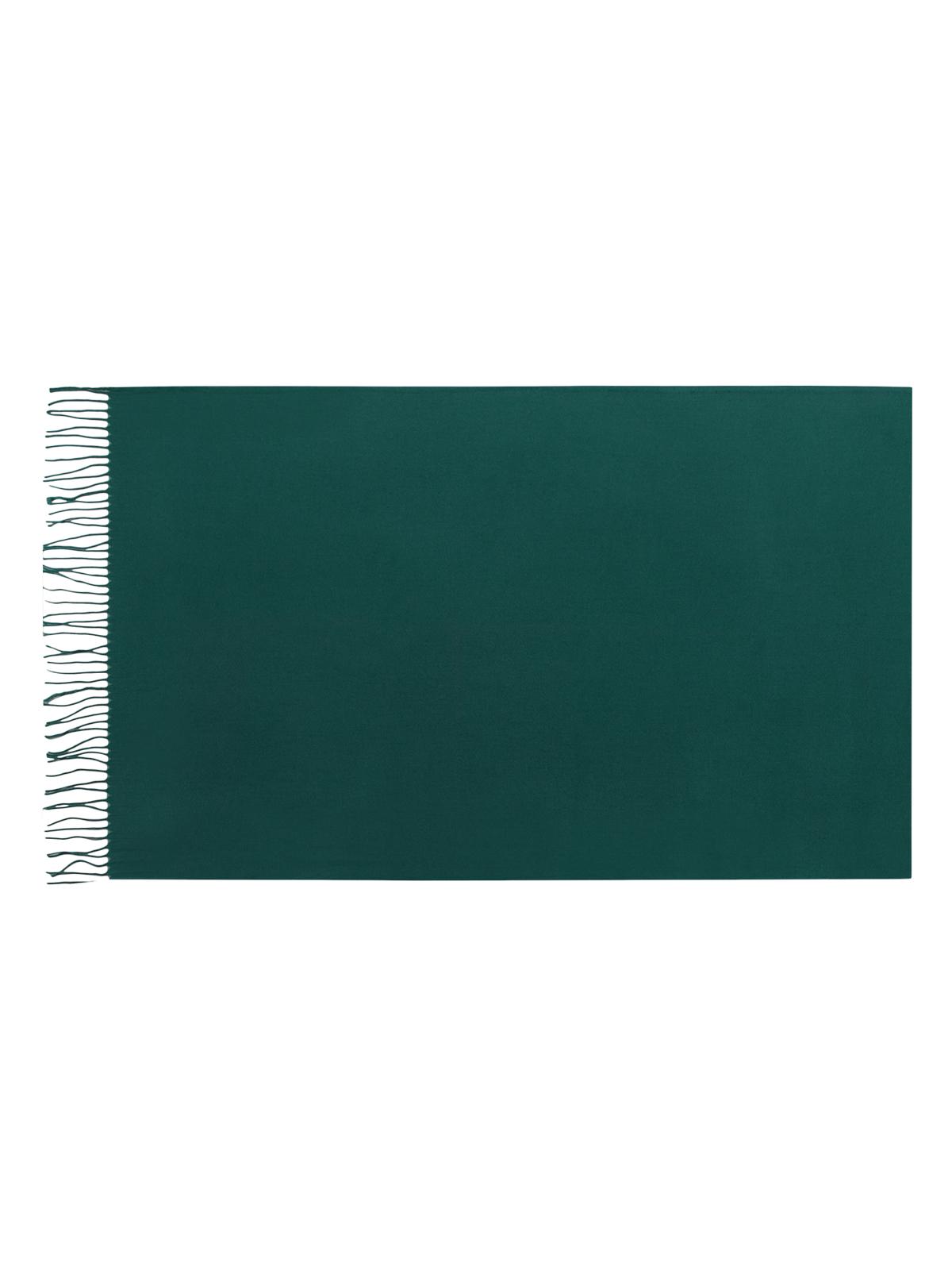 Палантин Eleganzza, цвет: зеленый. SZ23-0629. Размер 60 см х 180 смSZ23-0629Теплый палантин Eleganzza, изготовленный из хлопка с добавлением шерсти, мягкий и приятный на ощупь.Изделие выполнено в однотонном лаконичном цвете. По краям модель оформлена бахромой.