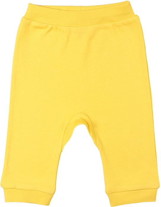 Ползунки для девочки Cherubino, цвет: желтый. CAN 7563 (142). Размер 74CAN 7563 (142)Ползунки для девочки Cherubino выполнены из гладкокрашеного трикотажа.Ползунки с открытыми ножками, на талии имеют эластичную трикотажную резинку, благодаря чему не сдавливают животик ребенка и не сползают. Оформлена модель ярким принтом.
