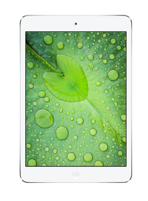 Apple iPad mini 2 Wi-Fi + Cellular 16GB, Silver