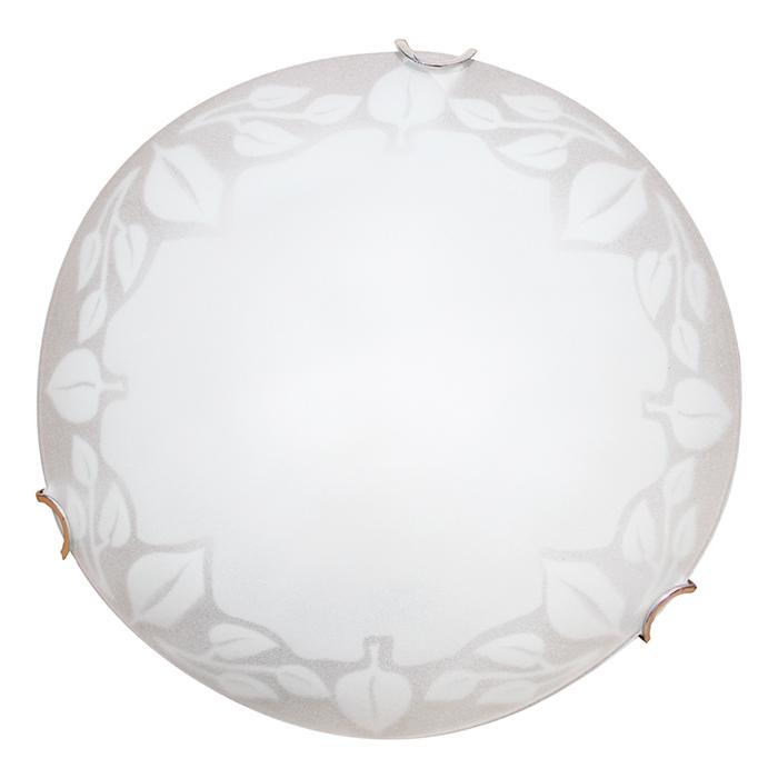 Светильник настенно-потолочный Arte Lamp Leaves A4020PL-2CCA4020PL-2CC