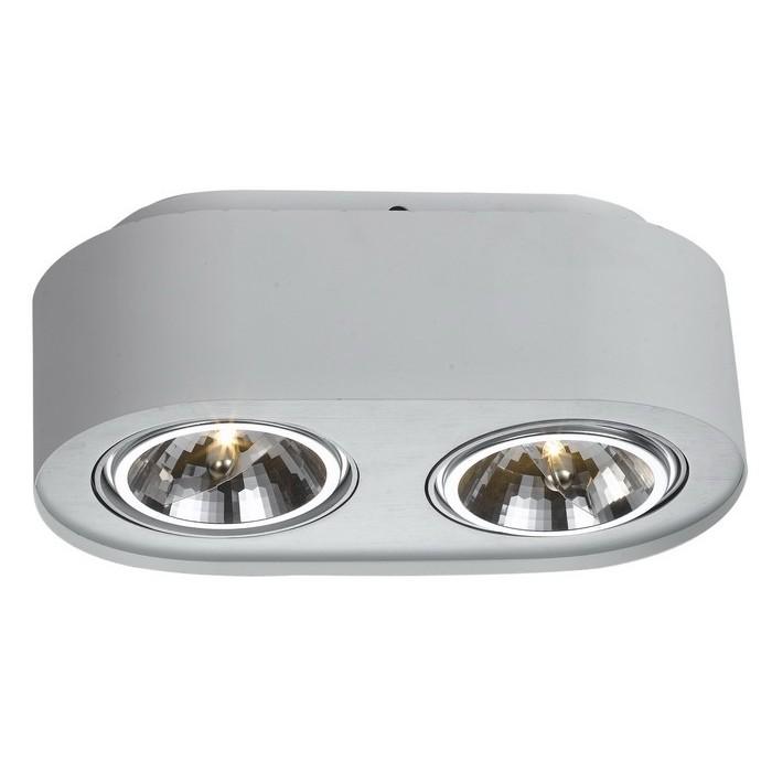 Светильник потолочный Arte Lamp CLIFF A5643PL-2WHA5643PL-2WH