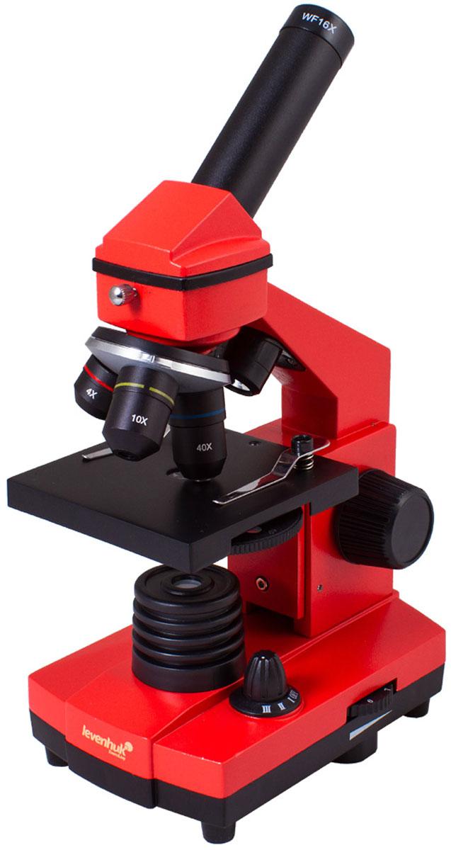Levenhuk Rainbow 2L Plus, Orange микроскоп XSP-42 metal Pantone #179C