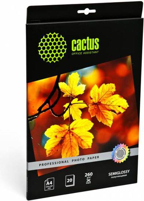 Cactus Prof CS-SGA426020 A4/260г/м2 полуглянцевая фотобумага для струйной печати (20 листов)CS-SGA426020Полуглянцевая фотобумага Cactus Prof CS-SGA426020 для струйной печати.Превратите ваши фотографии в произведения искусства и сохраните их в первозданном виде на многие годы. Фотобумага серии Cactus Professional незаменима для печати цифровых фотографий с максимальным разрешением. Высококлассное покрытие и современная полимерная основа фотобумаги Cactus Professional гарантируют максимально точную цветопередачу.Совместима со струйными принтерами Hewlett Packard, Canon, Epson и другими марками. Рекомендуется для профессионального использования в фотостудиях, дизайнерских и художественных бюро.