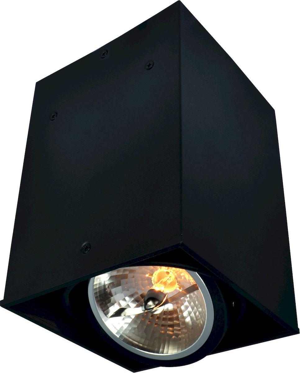 Светильник потолочный Arte Lamp CARDANI A5936PL-1BKA5936PL-1BK