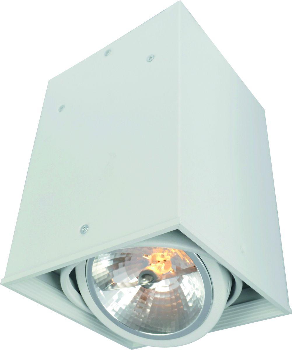 Светильник потолочный Arte Lamp CARDANI A5936PL-1WHA5936PL-1WH