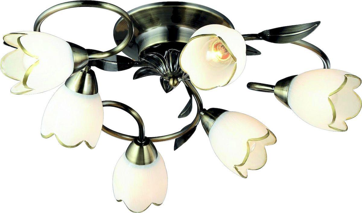 Светильник потолочный Arte Lamp PERCE A6061PL-6ABA6061PL-6AB