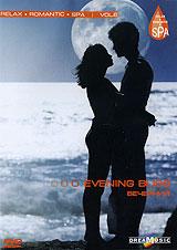 Relax: Вечерний. Vol. 6 2008 DVD